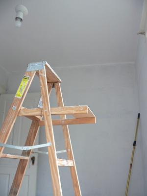 Laddershot